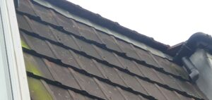 Roofing company bournemouth has a team of tile experts to offer the best advice